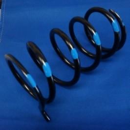 Dalton Black/ Blue secondary spring