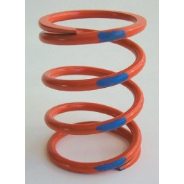 Dalton ATV Primary Springs