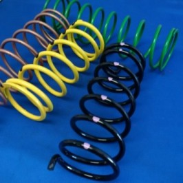 Can Am Secondary springs