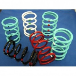 Arctic Cat Primary Springs